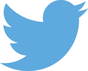 add a Twitter feed to your website